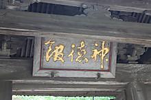 4img_7808